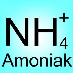 Stanovení amonných iontů
