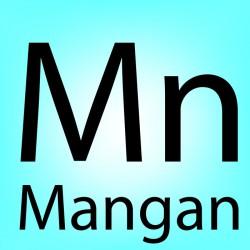 Stanovení manganu